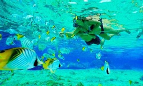 mergulho em buzios - casal snokel