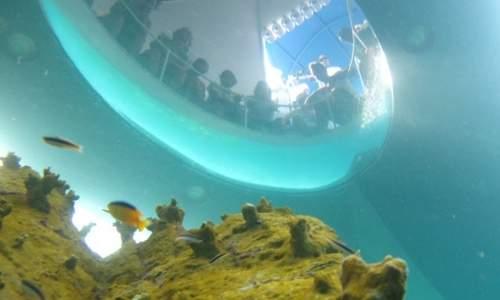 visao-submarina