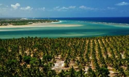 Praia do Gunga, paraíso no litoral de Alagoas - 04