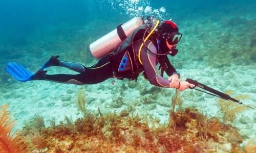 Pesca de Praia - pesca com arpao